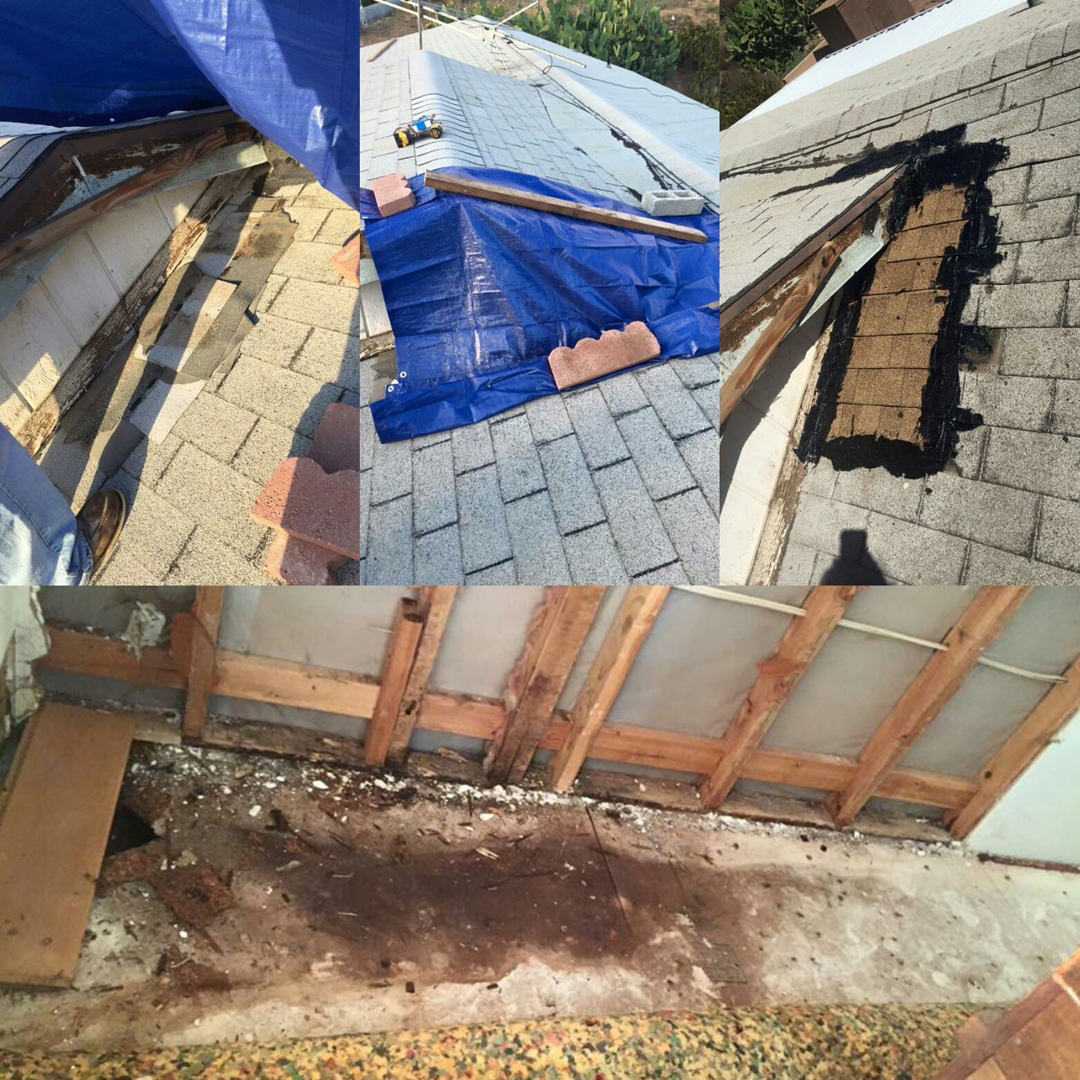 Leaky Roof Water Damage: Community Comes Together To Repair Rain Damaged Home